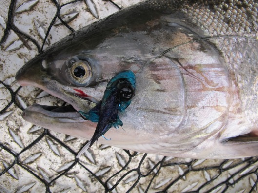 Silver Salmon Aerojig Twitching Jig